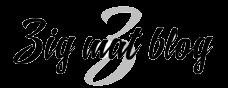 Zig Mat Blog